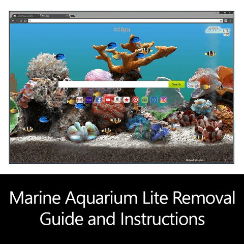 Marine Aquarium Lite Removal Guide and Instructions