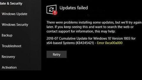 update failed to install error 0xca00a000