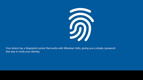 Disable or Enable Domain Users Sign in using Biometrics